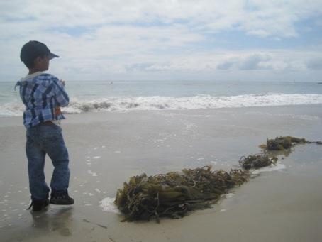 mami day beach fun 15