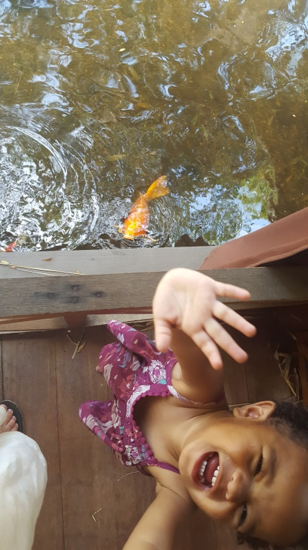 Fish & Toes 10