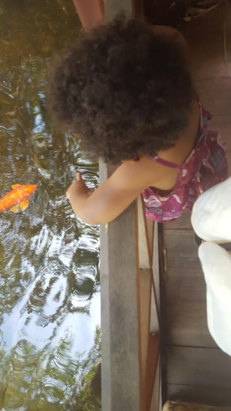 Fish & Toes 6