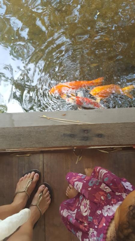 Fish & Toes 8